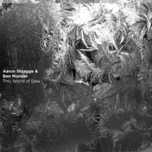Aaron Shragge & Ben Monder - The World of Dew